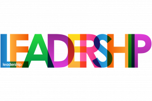Image result for 2018 leadership in action lindenwood university
