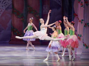 The Saint Louis Ballet
