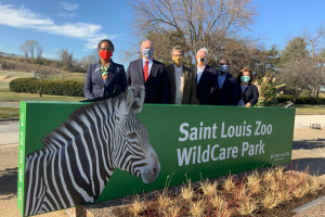 Lindenwood Students Get Real Experience Interning at Saint Louis Zoo