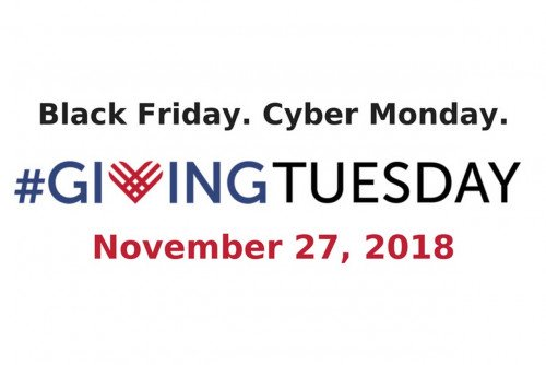 Giving Tuesday Will Support Lions' Reserve Fund