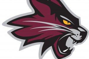 Lindenwood University-Belleville Reveals New Lynx logo