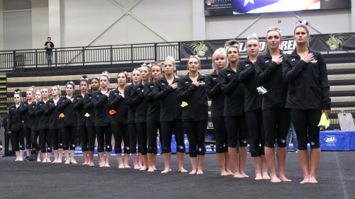 Lions Gymnastics Achieves Rarity in Advance to NCAA Regional