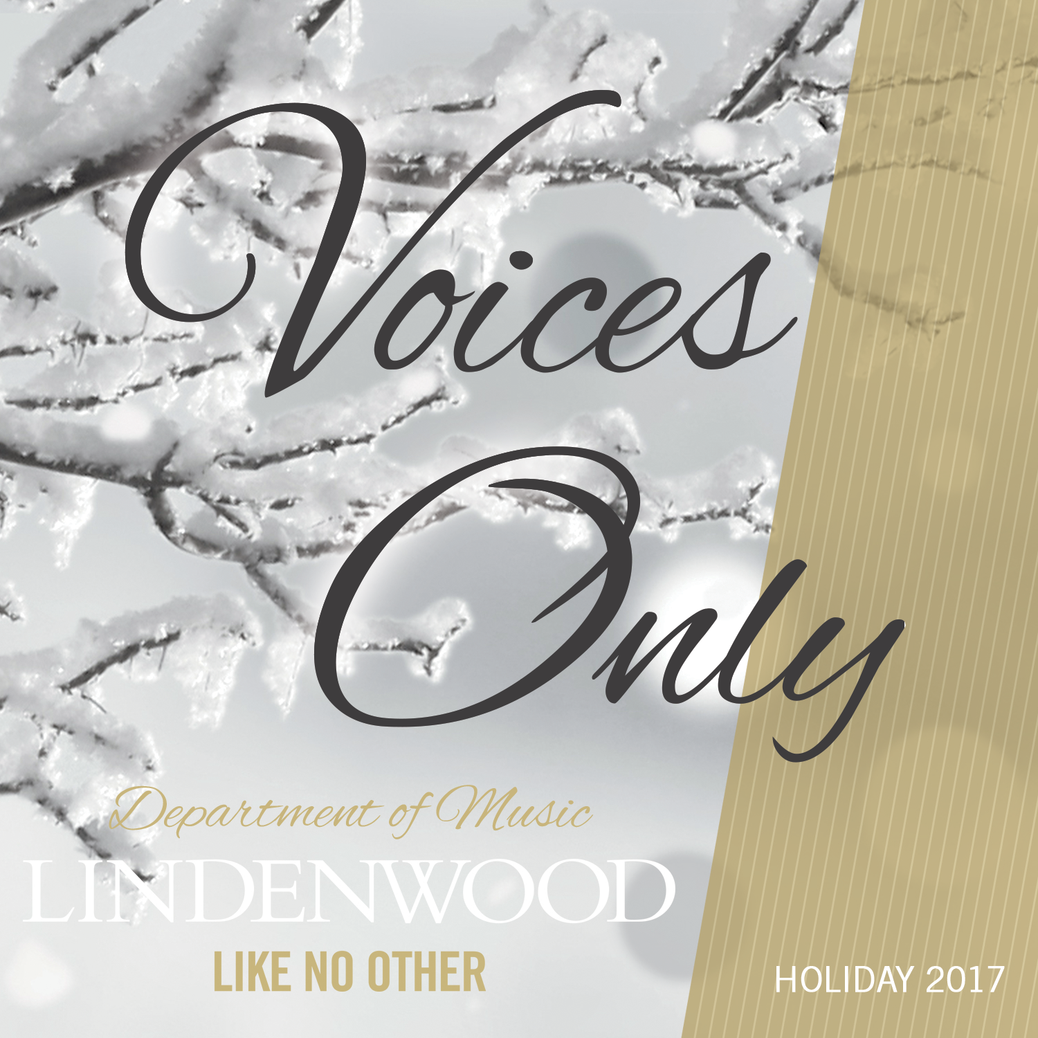 Voices Only Holiday Album