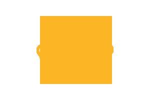 I.D. card icon