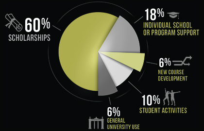 How your gift is used pie chart
