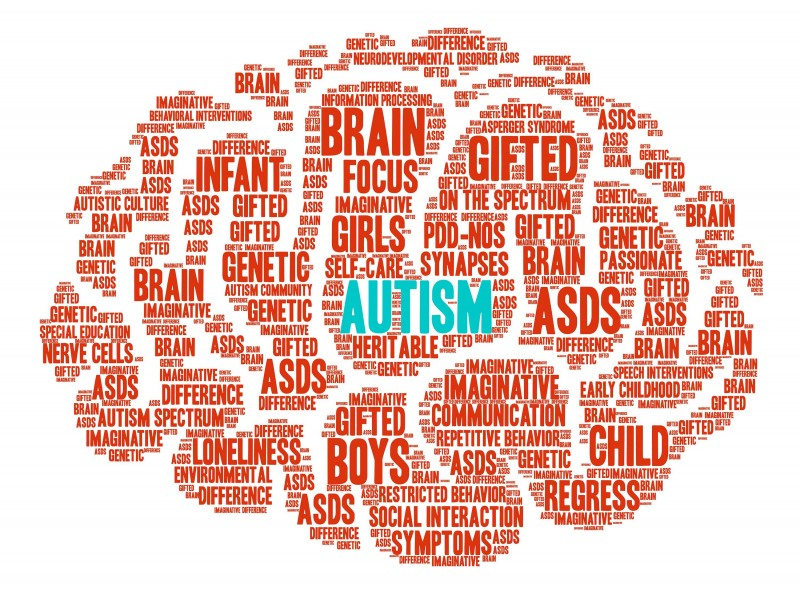 Twice Exceptional Learners Special >> Identifying And Supporting Twice Exceptional Students With Autism