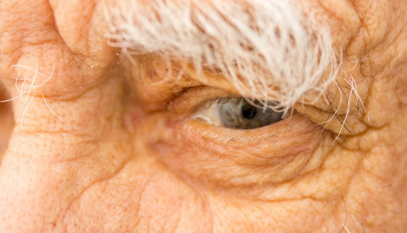 Lifelong Learning: The Key to Successful Aging