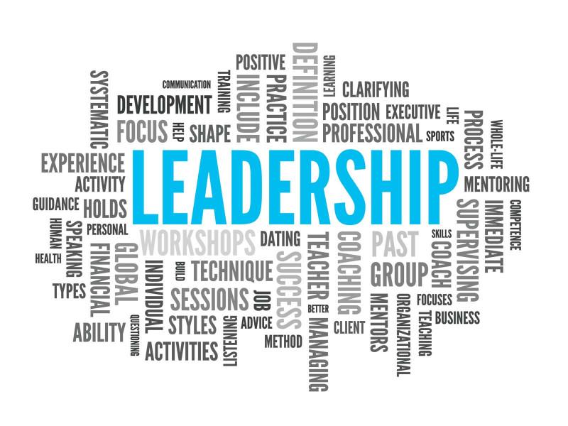 Novice Principals' Transformational and Transactional Leadership Practices